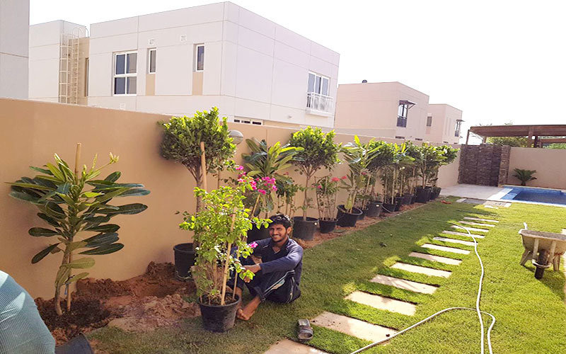 Best Landscaping company in Dubai- A reliable garden ...