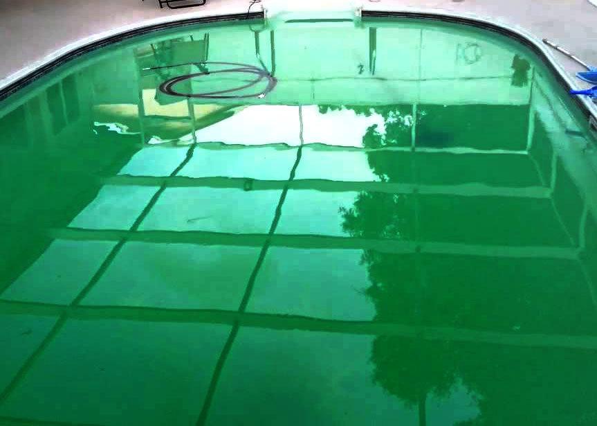 algae on bottom of pool in Dubai